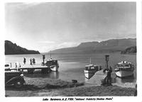 Lake Tarawera. Postcard.