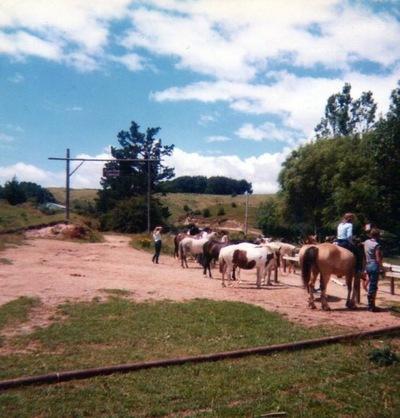 Horse treking, Kiwi Ranch style